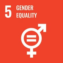 sustainable-gender-equality