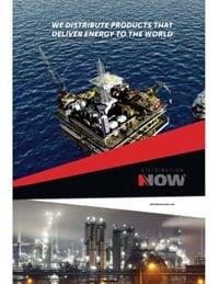 DistributionNOW Brazil Brochure [Portuguese Version]