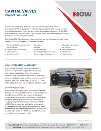 DNOW Capital Valves Project-Focused Flyer [A4]